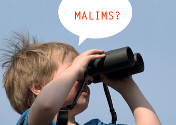 looking for malims